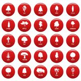 Tree icons set vetor red. Tree icons set. Simple illustration of 25 tree vector icons red isolated Royalty Free Stock Photo