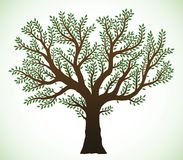 Tree illustration royalty free illustration