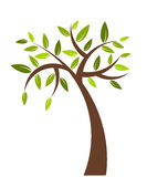 Tree illustration Royalty Free Stock Image