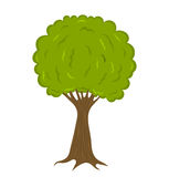 Tree illustration Royalty Free Stock Photography