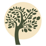 Tree Illustration Royalty Free Stock Photos