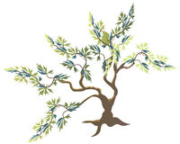 Tree illustration Royalty Free Stock Photo