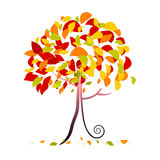 Tree Illustration - Abstract Vector Autumn Tree Royalty Free Stock Images