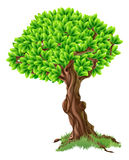 Tree Illustration Stock Photos