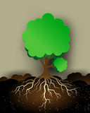 Tree illustration with green leaves and roots Stock Photos