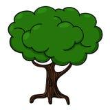 Tree illustration. Tree isolated on white background Royalty Free Stock Photos