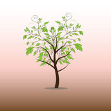 Tree illustration Stock Photography