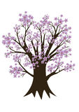 Tree. An Illustration of a tree with pink blossom Stock Image