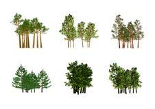 Tree illustration Stock Image