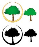 Tree illustrations Stock Images