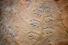Tree image carving on stone photograph. Royalty Free Stock Image