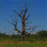 Tree image knit generated texture Stock Images