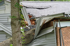 Tree Impales House Royalty Free Stock Images