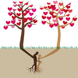 Tree In Love Royalty Free Stock Photos