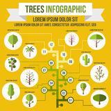 Tree infographic, flat style Royalty Free Stock Image