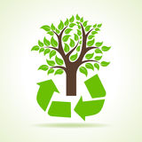Tree inside the recycle icon Royalty Free Stock Photography