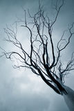 Tree from iron Stock Photos