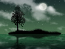 Tree on island. In ocean on background of the full moon Stock Photography