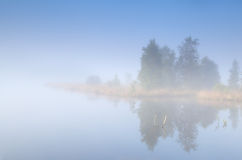 Tree island on lake in fog Stock Images
