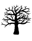 Tree  isolated on white background. Royalty Free Stock Images