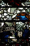 Tree of Jesse in stained glass Royalty Free Stock Photography