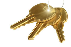 Tree keys Royalty Free Stock Photography