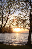 Tree of knowledge. A sun sets between two young trees along the shoreline of Lake Ontario Royalty Free Stock Image