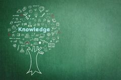 Tree of knowledge education concept on green chalkboard background with doodle