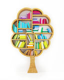Tree of Knowledge, Wooden Shelf with Multicolor Books Isolated on White Background Royalty Free Stock Photography