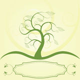 Tree with label. Illustration of a tree , with bottom label Royalty Free Stock Image