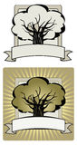 Tree label. Vector illustration of a label with oak tree silhouette Stock Photo