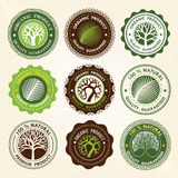 Tree label Royalty Free Stock Photography