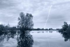 Tree into the lake Stock Photo