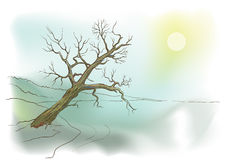Tree by the lake vector illustration