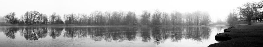 Tree and Lake Panorama Royalty Free Stock Photos