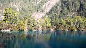 Tree and lake in winter. Located in Jiuzhaigou.nJiuzhaigou,reputed as a fairyland,located in Jiuzhaigou County of Aba Tibetan and Qiang Nationality Autonomous stock footage