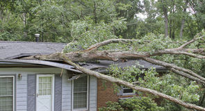 Tree Lands On House Roof Crushing It Royalty Free Stock Images