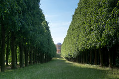 Tree lane and Belvedere Royalty Free Stock Photos