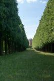 Tree lane and Belvedere Stock Photos