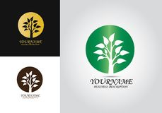 Tree Leaf Design Logo royalty free illustration