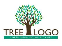 Tree leaf logo design, eco-friendly look royalty free stock photography