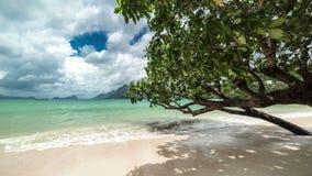 Tree leaned off the coast of Las Cabanas beach. 4K TimeLapse - August 2016, El Nido Palawan, Philippines stock footage