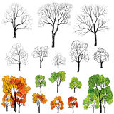 Tree with and without leave set. Four seasons floral icon collection Stock Photo