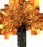 Tree, Leaves, Autumn, Fall Royalty Free Stock Photo