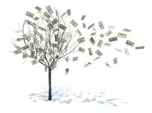 Tree with leaves falling notes Royalty Free Stock Photos