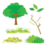 Tree Leaves Grass Bush Branch Flora Cartoon Vector Royalty Free Stock Images