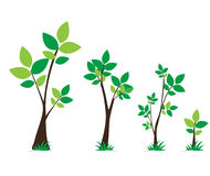 Tree and leaves green set vector design Stock Photos