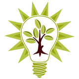 Tree with leaves and light bulb royalty free stock image