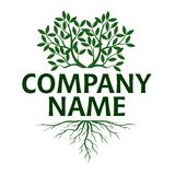 Tree with Leaves and Roots. Vector Illustration. Company name royalty free illustration