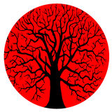 Tree without leaves silhouette Stock Image